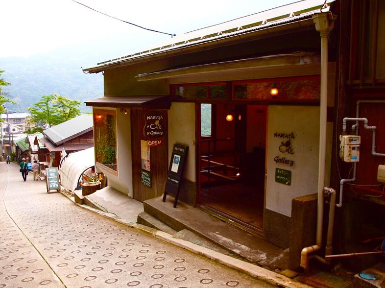 Hakoneajisai2013063010
